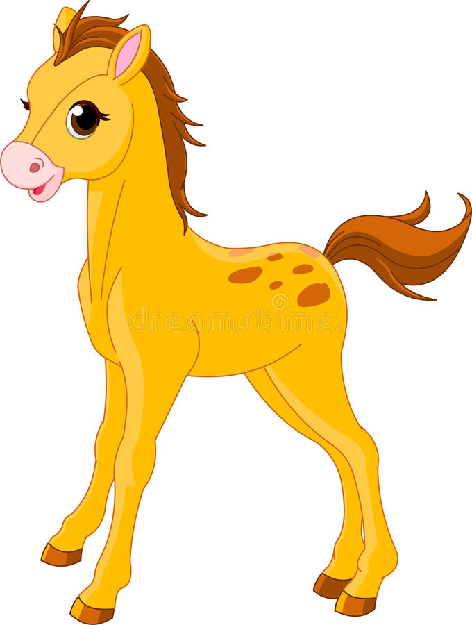 Nettes Pferdenfohlen lizenzfreie abbildung