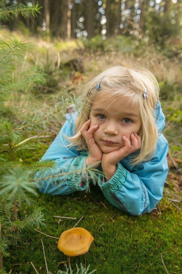 Nettes Sammeln des kleinen Mädchens vermehrt sich in Sommerwald explosionsartig stockbild