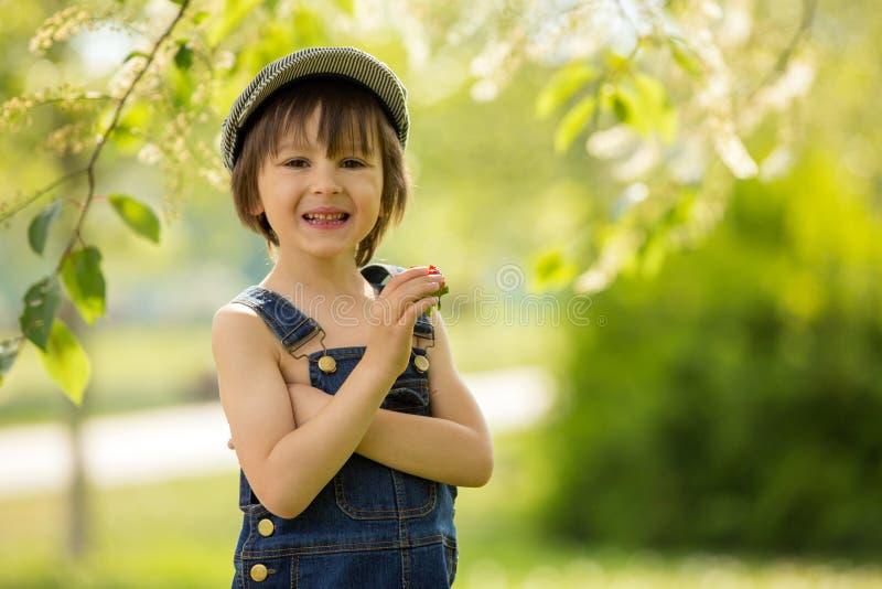 Nettes schönes Kind, Junge, Erdbeeren und im Park essend lizenzfreie stockfotografie