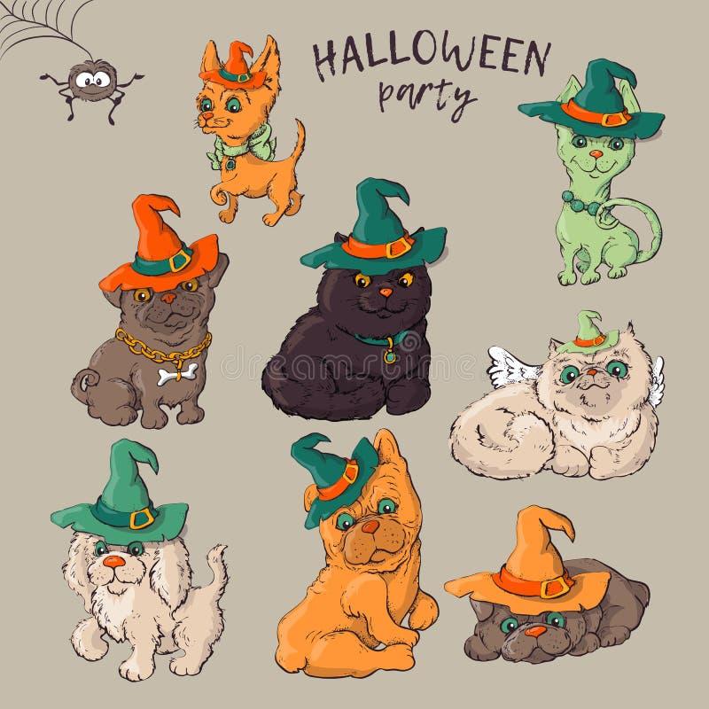 Nettes schwarzes Kätzchen und Hund, die lustige und fantastische Halloween-Hüte legen mit einem belichteten Steckfassung-Olaterne stock abbildung