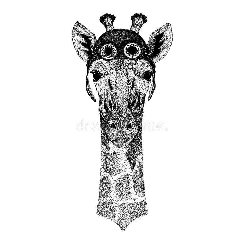Nettes tragendes Tiermotorrad, Fliegersturzhelm Camelopard, gezeichnetes Bild der Giraffe Hand für Tätowierung, Emblem, Ausweis,  stock abbildung