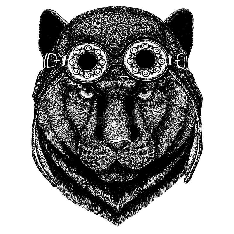 Nettes tragendes Tiermotorrad, gezeichnetes Bild der Fliegersturzhelm Panther-Puma-Puma-Wildkatze Hand für Tätowierung, Emblem, A lizenzfreie abbildung