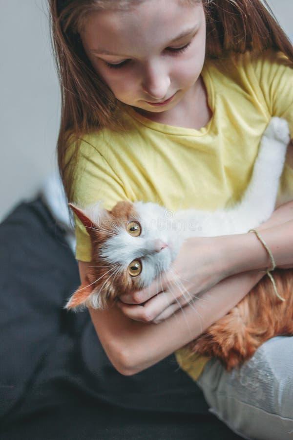 Nettes Tweenmädchen im gelben T-Shirt mit ihrer weißen Katze zu Hause lizenzfreie stockfotos