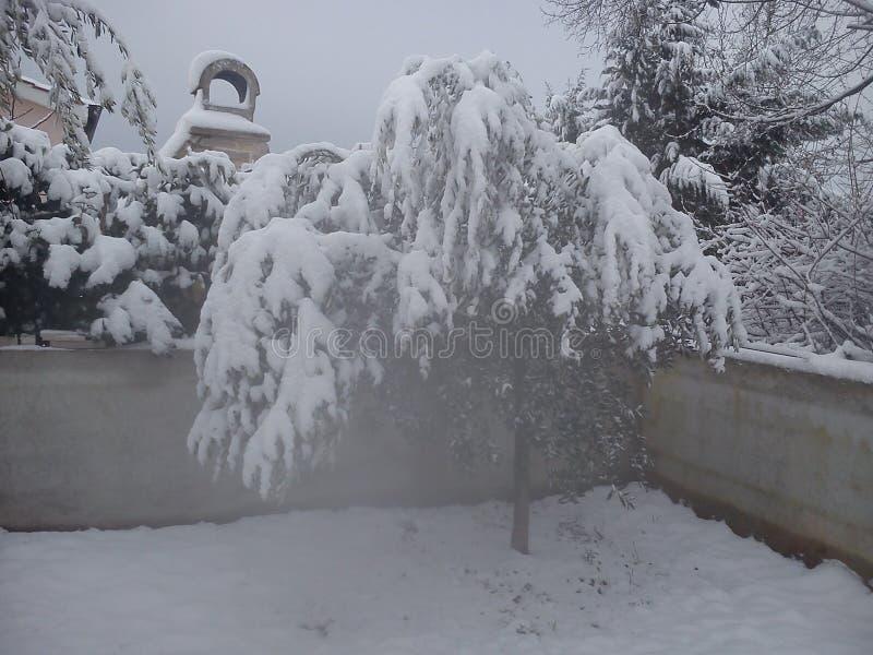 Nettester Winter lizenzfreie stockfotografie