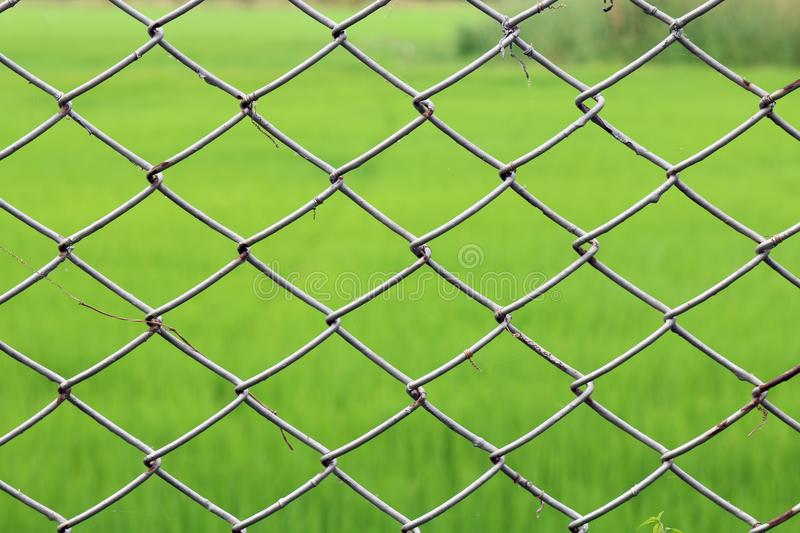 Metal netting, Mesh fence iron Rusty barbed wire detention center security, Chain link fence close up on green nature background, royalty free stock images