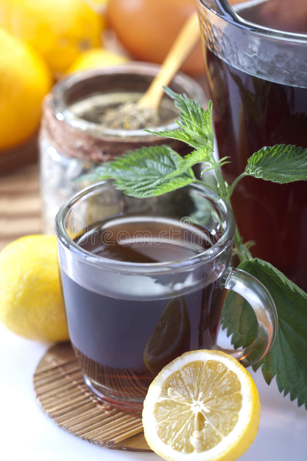 Nettle and nettle tea. Nettle and freshly made nettle tea in glass cup, with lemon royalty free stock image