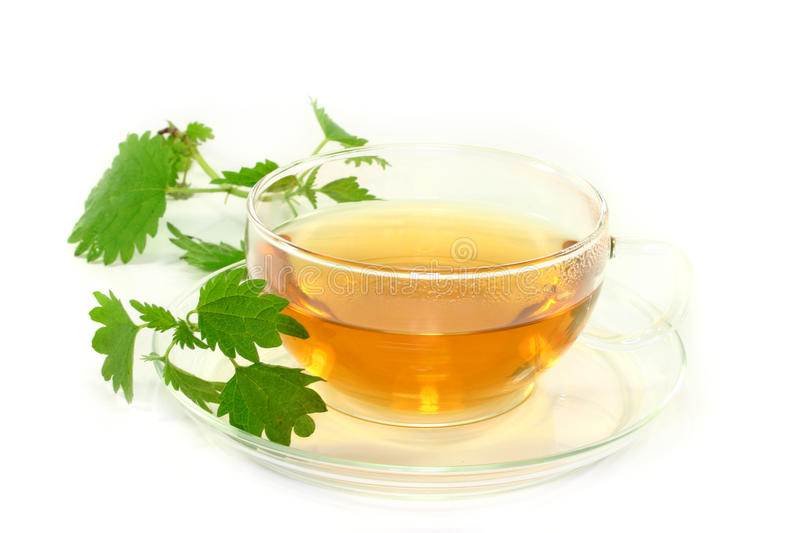 Nettle tea. A cup of nettle tea with fresh nettles on a white background royalty free stock images