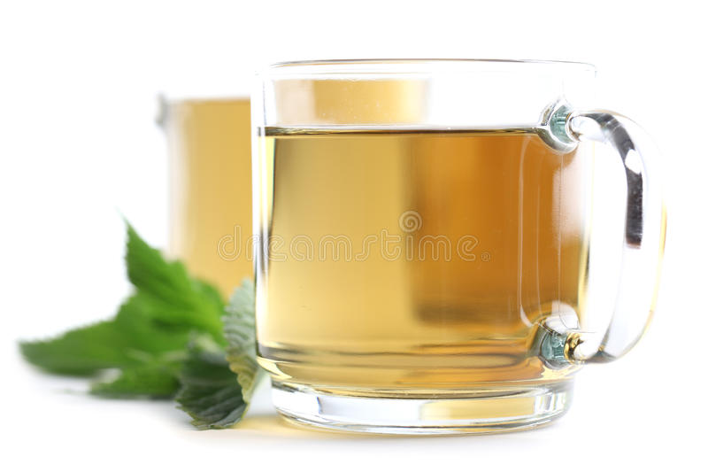 Nettle tea. Nettle and freshly made nettle tea in glass cups isolated on white background. Shallow dof royalty free stock photos