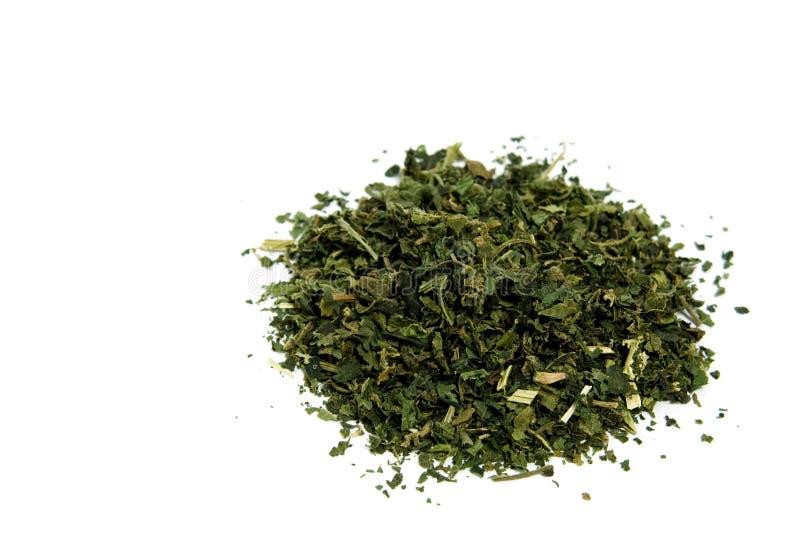 Nettle tea. Dry nettle tea on white background royalty free stock photography