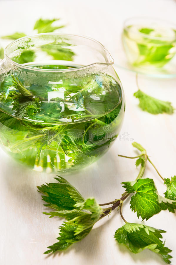 Nettle tea with glass pot and cup on white wooden background. Top view, close upn royalty free stock image
