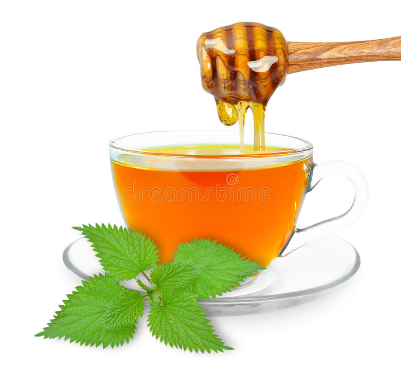 Nettle tea with honey. Nettle tea and honey dripping isolated on a white background royalty free stock image