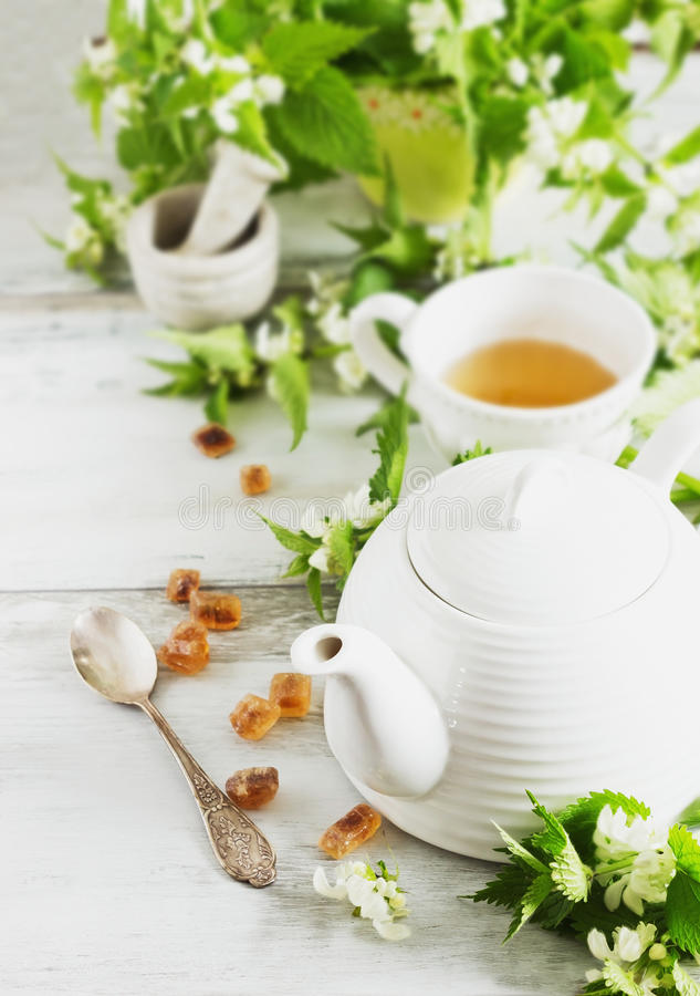 Nettle tea. Kettle, sugar and fresh nettle branches. health and diet concept stock image