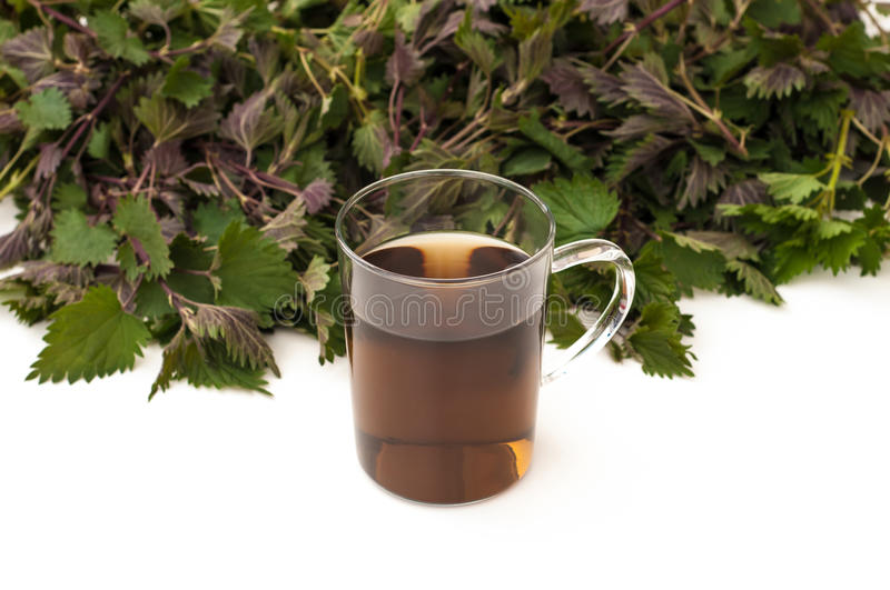 Nettle tea in a mug. With nettle leaves on background royalty free stock images