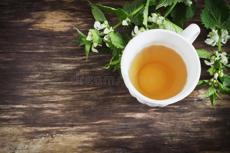 Nettle tea. And twigs of fresh nettle on the old wooden background. top view.copy space background royalty free stock image