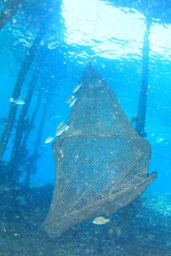 Netto vissen - onderwaterkooi royalty-vrije stock fotografie