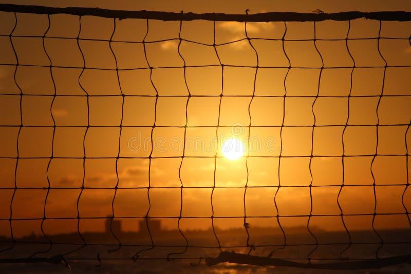 Netto volleyball royalty-vrije stock foto