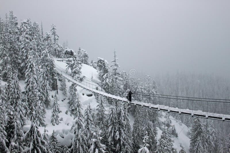 Nettoyage de la neige d'un pont suspendu photographie stock