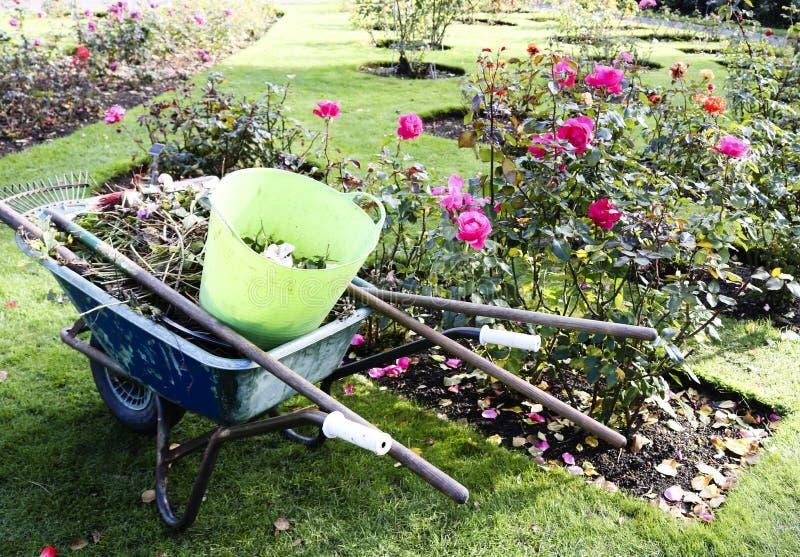 Nettoyage saisonnier de feuille du jardin de l'automne photo stock