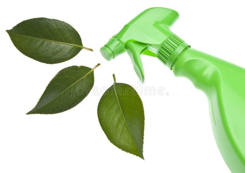 Nettoyage vert photo stock