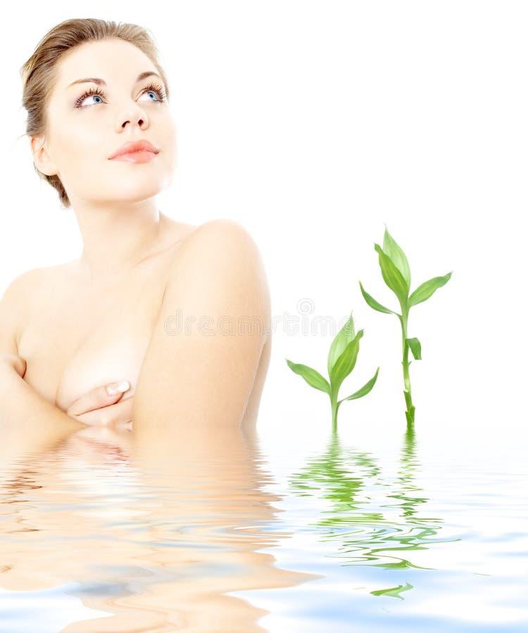 Nettoyez la dame dans l'eau avec les plantes vertes   photo libre de droits