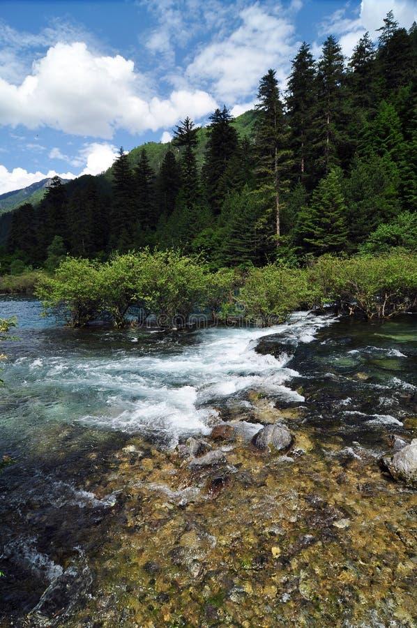 Nettoyez le courant sur les montagnes dans le site de la vallée de Jiuzhaigou photo libre de droits