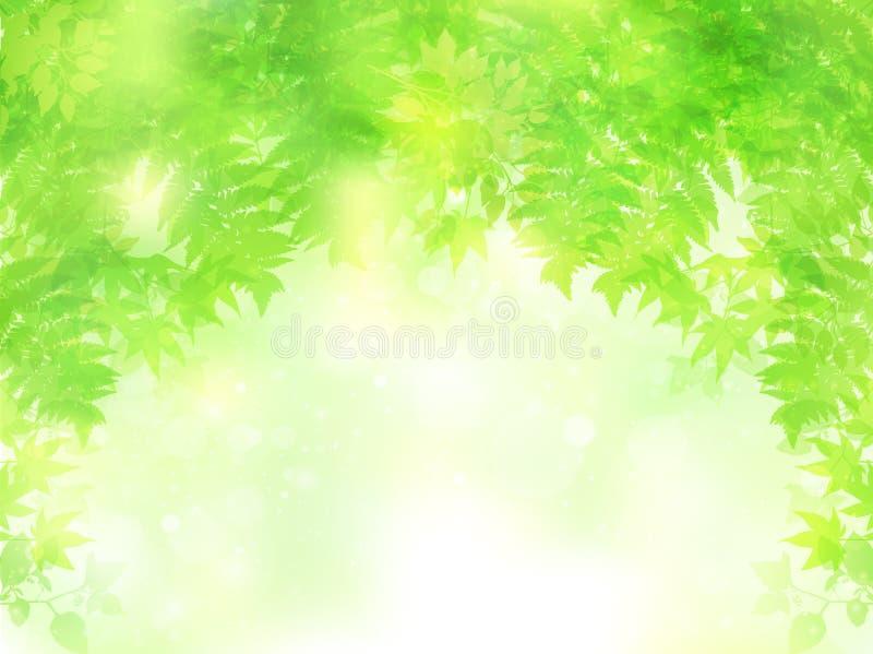 Nettoyez les illustrations vertes fraîches de fond illustration de vecteur