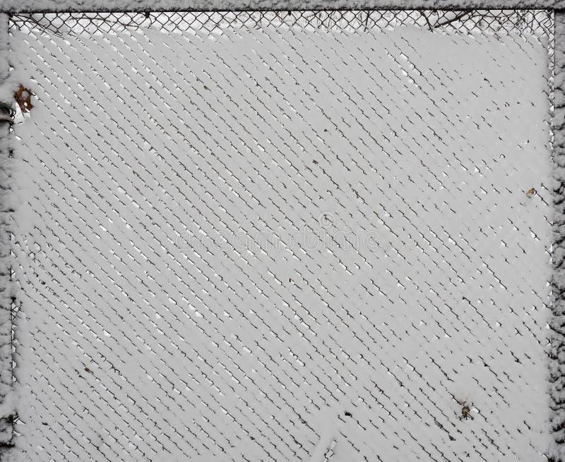 Netwerk het opleveren op sneeuw witte achtergrond royalty-vrije stock fotografie