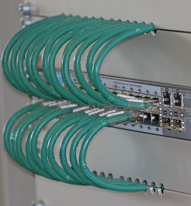 Netwerkkabels in een flardpaneel voor de verbinding van comput royalty-vrije stock afbeeldingen