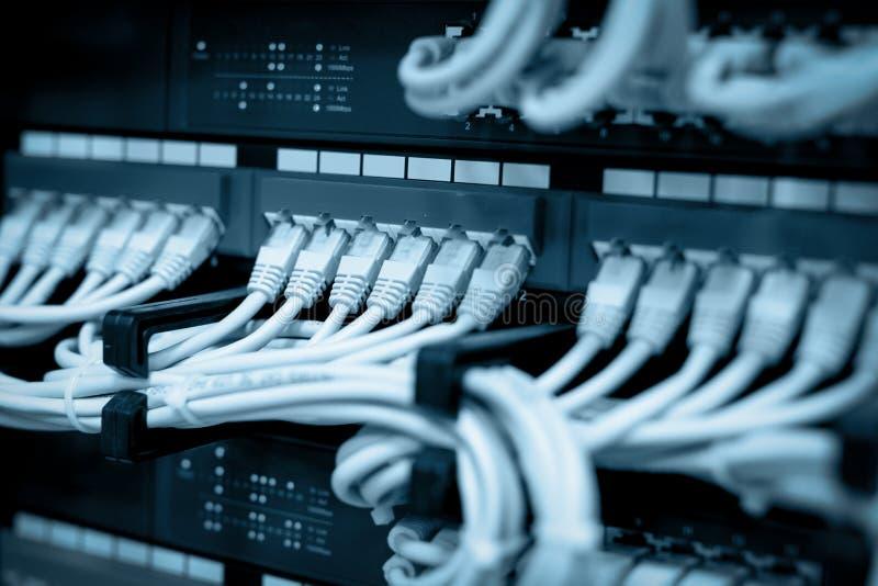 Netwerkkabels in netwerkschakelaars die worden verbonden royalty-vrije stock afbeeldingen