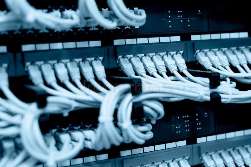 Netwerkkabels in netwerkschakelaars die worden verbonden stock foto