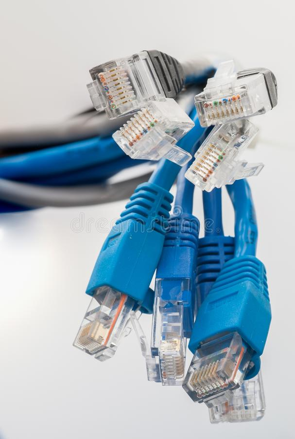 Netwerkkabels rg-45 de Schakelaarsclose-up van de Netwerkverbinding stock afbeelding