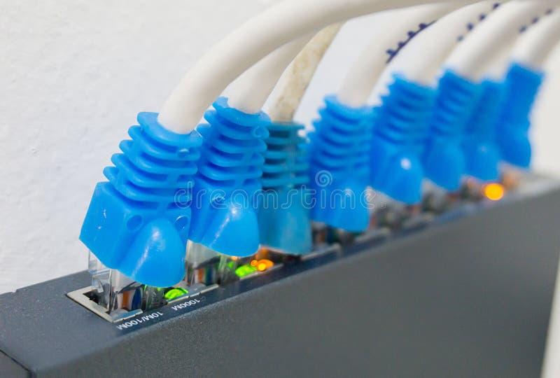 Netwerkschakelaar en ethernet kabels royalty-vrije stock fotografie