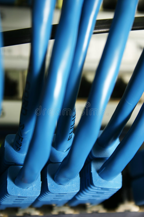 Network cable royalty free stock image