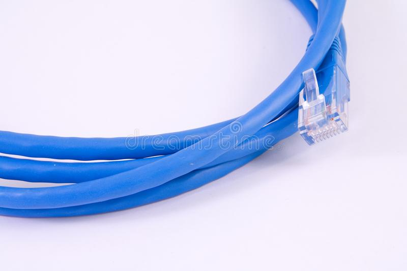 Download Network cable - patch-cord stock image. Image of cat - 36590379