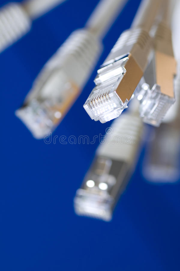 Network cables. White utp cat5 network cables blue background stock photography