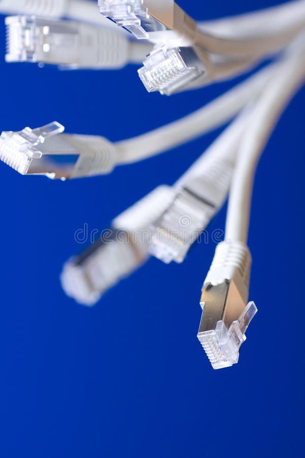 Network cables. White utp cat5 network cables blue background stock photos