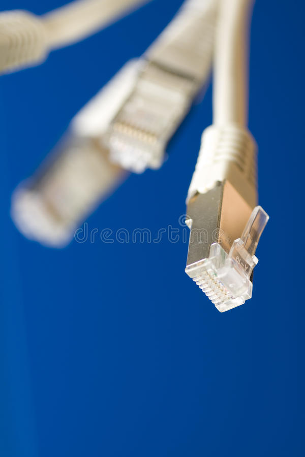 Network cables. White utp cat5 network cables blue background royalty free stock photography
