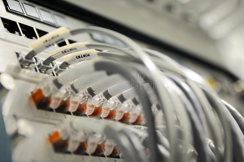 Network cables. And servers in a technology data center