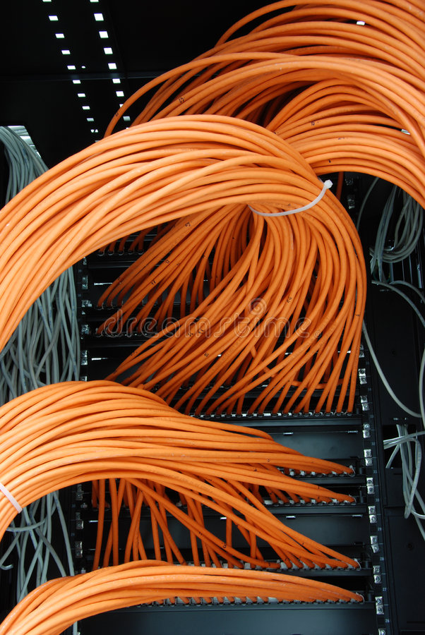 Network cables. Utp network cables in rack