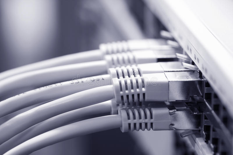 Network cables connected to a switch. (selective focus