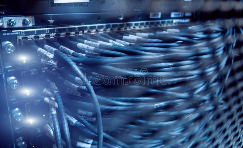Network cables connected to switch. Server racks, server room. royalty free stock photography