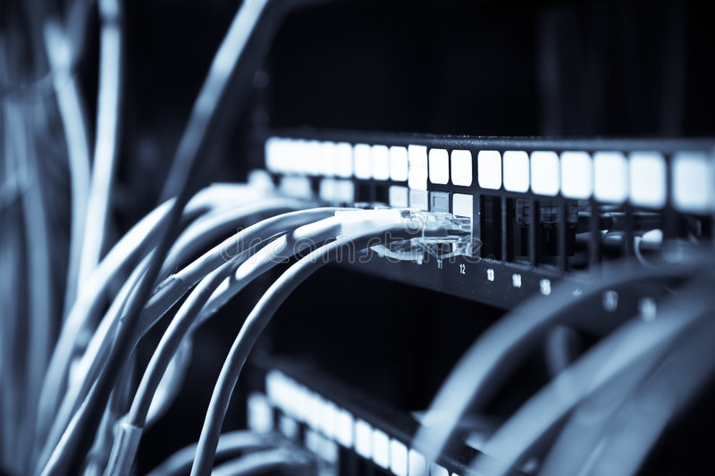 Network connection. A shot of network cables connected to switches in a data center (in blue tone