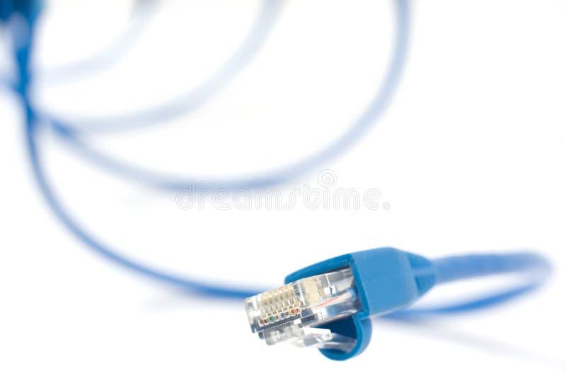 Network Connection Plug RJ-45 Stock Photos