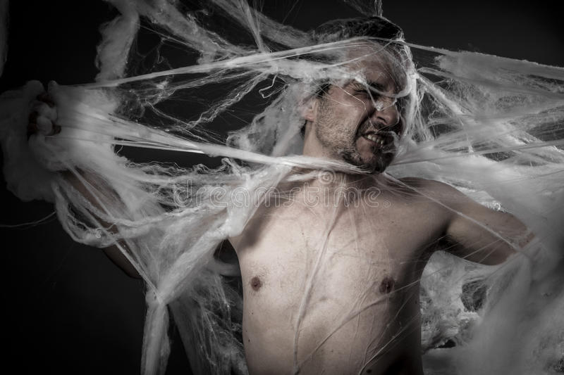 Download Network. Man Tangled In Huge White Spider Web Stock Images - Image: 37742274