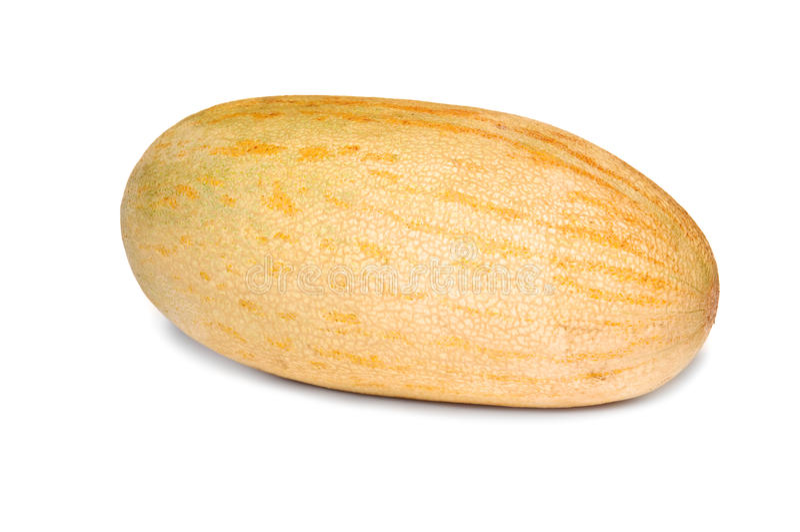 Netzförmige Melone stockfotografie