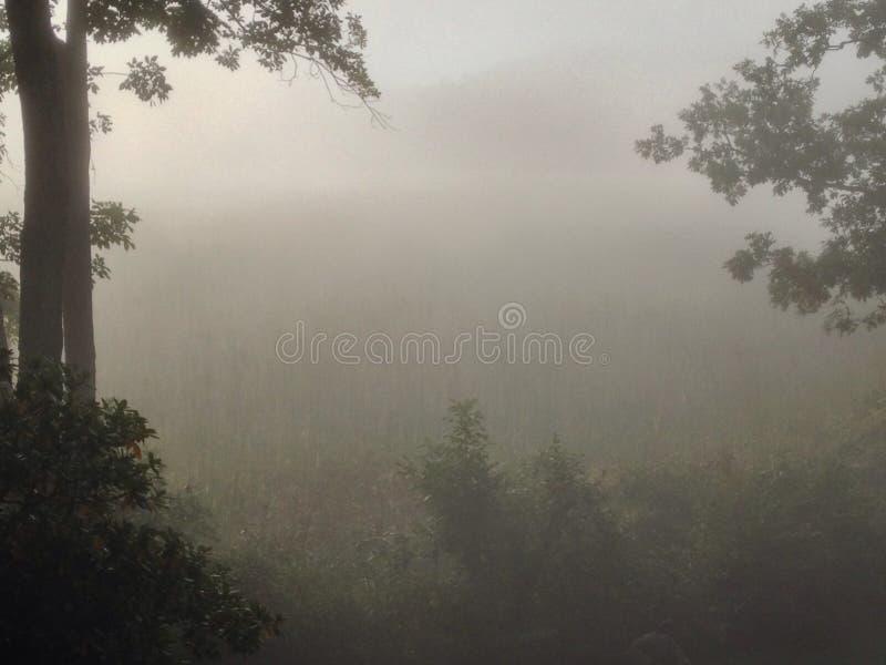 Neu-England Nebel stockbilder