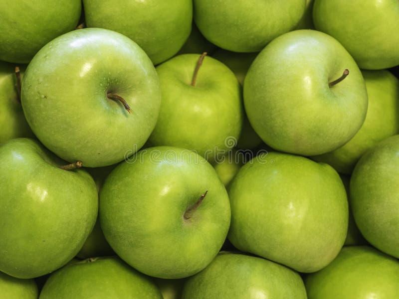 Neue Äpfel 'Granny- Smith'Vielzahl gewachsen im Apfelland Süd- Tirol, Nord-Italien stockfotos