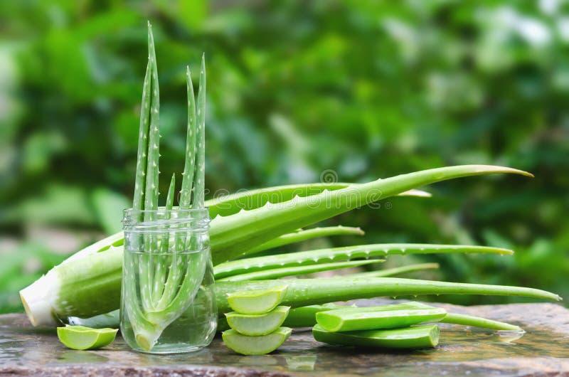neue Aloevera-Blattscheibe im Glas auf Stein stockfoto