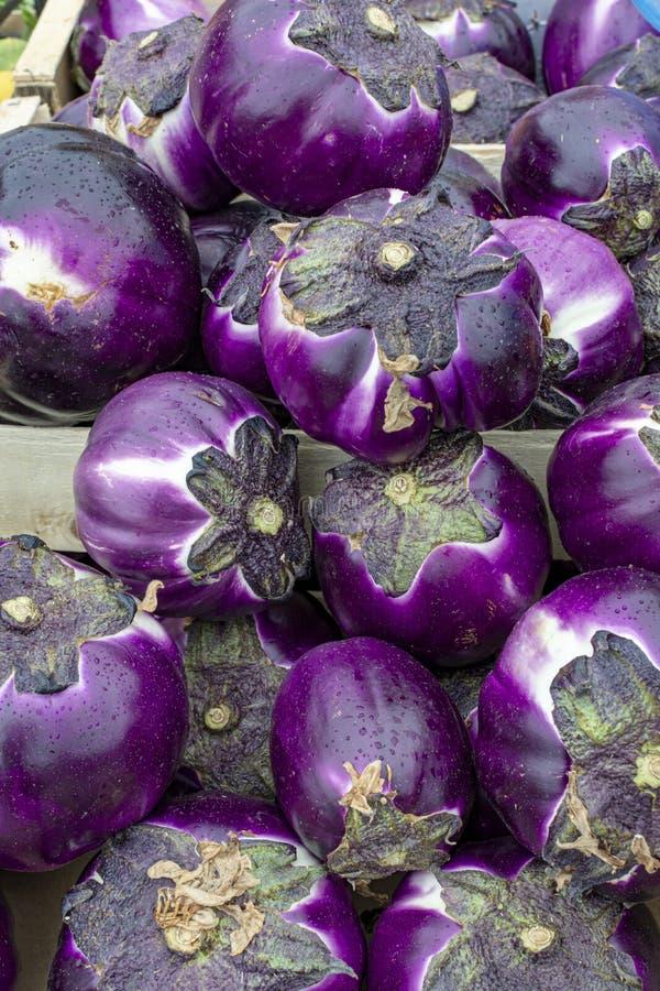Neue Ernte des geschmackvollen sizilianischen runden Violaauberginengem?ses auf Markt stockfotos