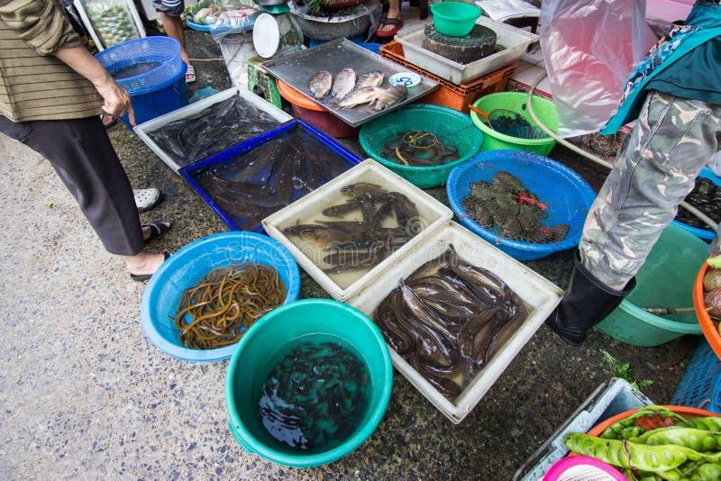 Neue fishs am Fischmarkt stockbild
